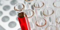 © Фото Bill Oxford, unsplash.com - Yuga.Ru